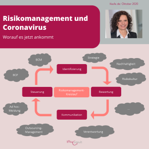 Risikomanagement-Kreislauf